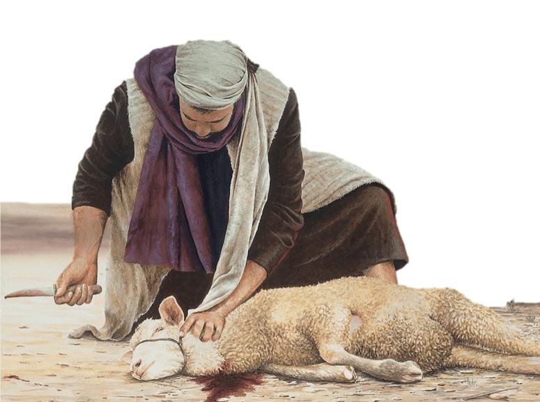 sacrificio cordeiro